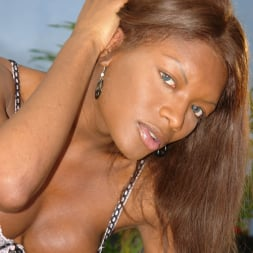 Amyiaa Starr in 'I Love Black Shemales' She-Male XTC 06 (Thumbnail 4)