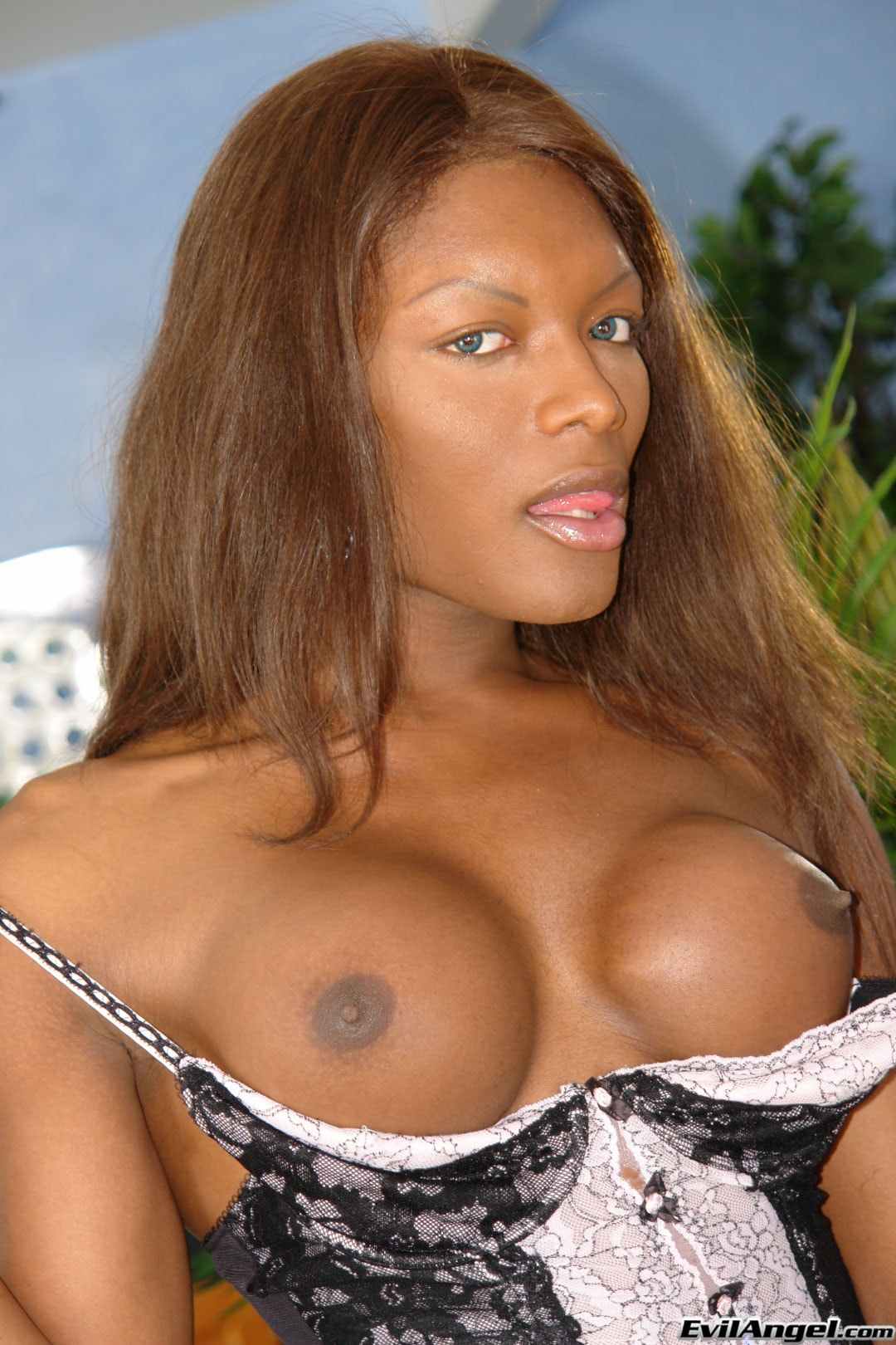 I Love Black Shemales 'She-Male XTC 06' starring Amyiaa Starr (Photo 5)