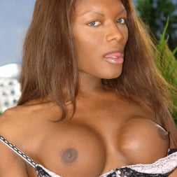 Amyiaa Starr in 'I Love Black Shemales' She-Male XTC 06 (Thumbnail 5)