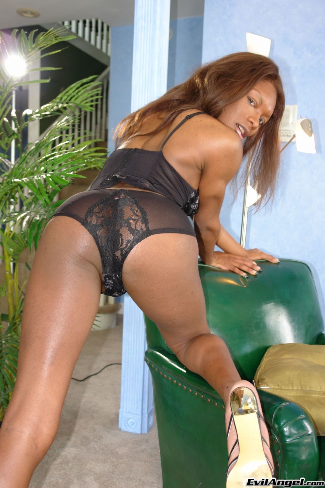 I Love Black Shemales 'She-Male XTC 06' starring Amyiaa Starr (Photo 7)