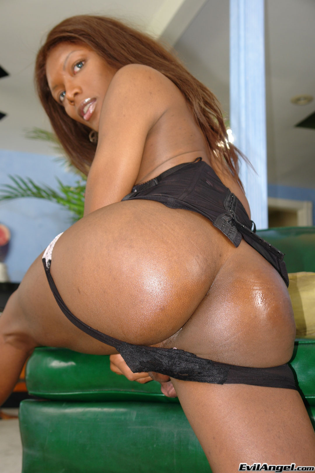 I Love Black Shemales 'She-Male XTC 06' starring Amyiaa Starr (Photo 11)