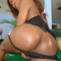 Amyiaa Starr in 'I Love Black Shemales' She-Male XTC 06 (Thumbnail 11)