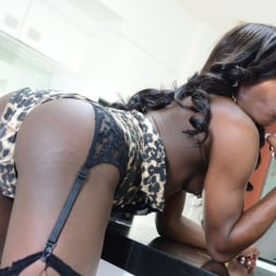 Brii in 'I Love Black Shemales' Black Shemale Idol - The Auditions 04 (Thumbnail 90)