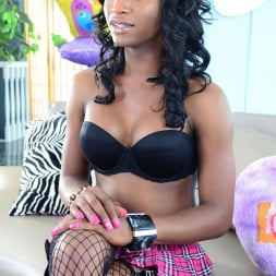 Hailey Holiday in 'I Love Black Shemales' American She-Male X 05 (Thumbnail 105)