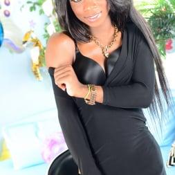 Kourtney Dash in 'I Love Black Shemales' She-Male XTC 12 (Thumbnail 1)