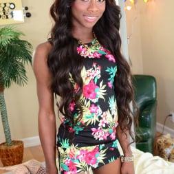Kourtney Dash in 'I Love Black Shemales' The Next She-Male Idol 09 (Thumbnail 1)