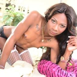 Kourtney Dash in 'I Love Black Shemales' The Next She-Male Idol 09 (Thumbnail 36)