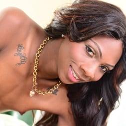 Kourtney Dash in 'I Love Black Shemales' The Next She-Male Idol 09 (Thumbnail 45)