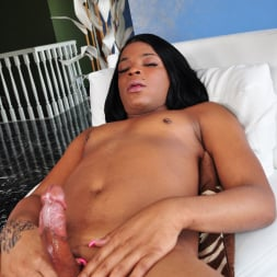 Lola Bonnie in 'I Love Black Shemales' Black Shemale Idol - The Auditions (Thumbnail 22)