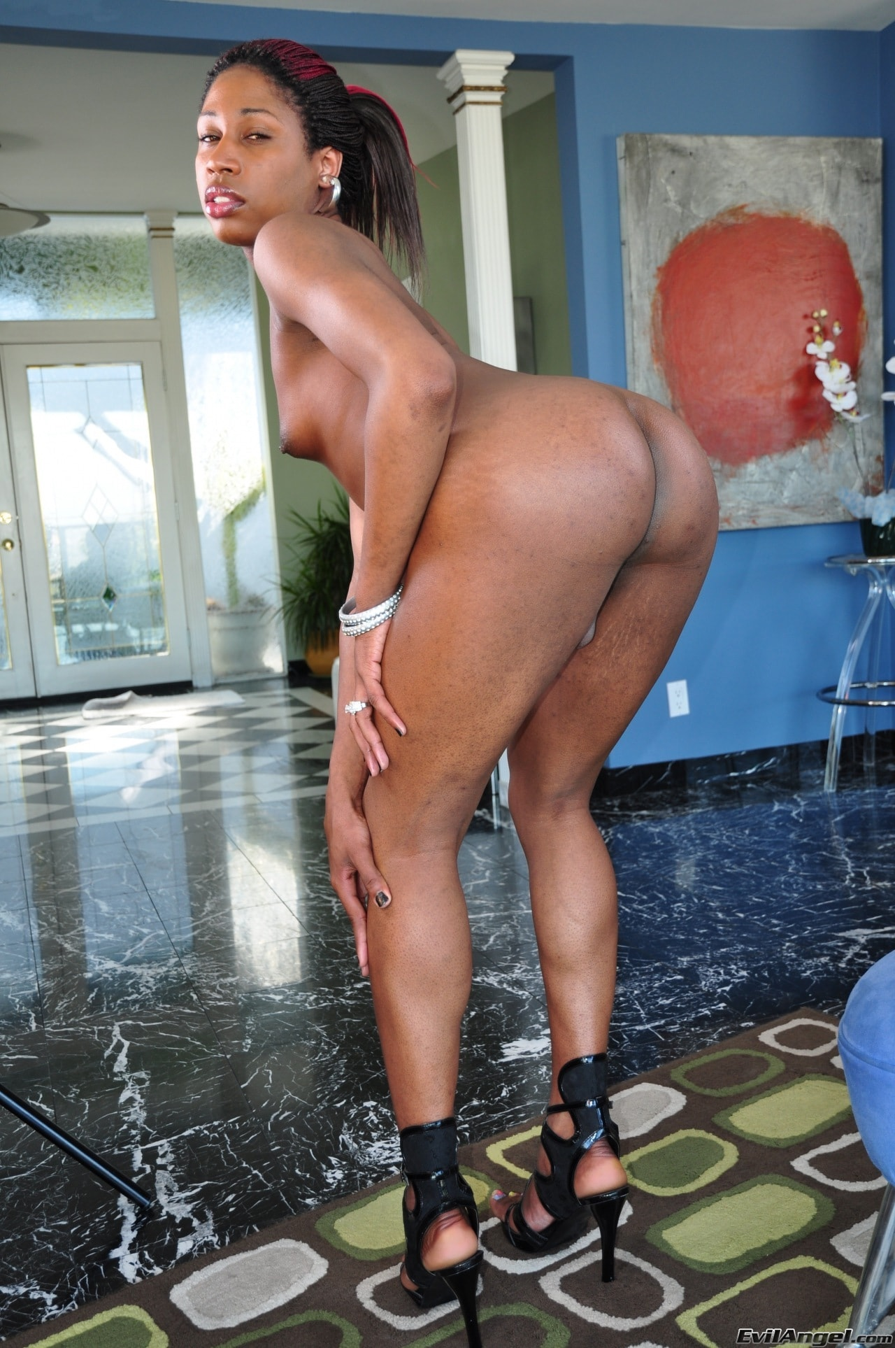 I Love Black Shemales 'Black Shemale Idol - The Auditions 02' starring Lovely B (Photo 50)