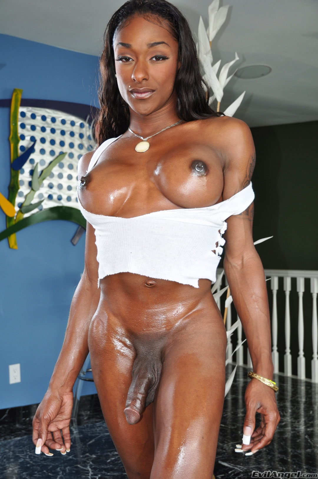 I Love Black Shemales 'Black Shemale Idol - The Auditions' starring Natalia Coxxx (Photo 27)