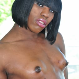 Naughty Natasha in 'I Love Black Shemales' Black Shemale Idol - The Auditions 02 (Thumbnail 25)