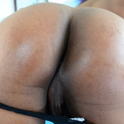 Nyla Melrose in 'I Love Black Shemales' Black Shemale Idol - The Auditions 04 (Thumbnail 90)