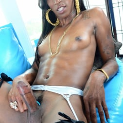 Nyla Melrose in 'I Love Black Shemales' Black Shemale Idol - The Auditions 04 (Thumbnail 139)
