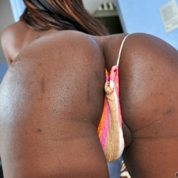 Sex Kitten in 'I Love Black Shemales' Black Shemale Idol - The Auditions (Thumbnail 18)