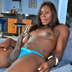 Sex Kitten in 'I Love Black Shemales' Black Shemale Idol - The Auditions (Thumbnail 20)