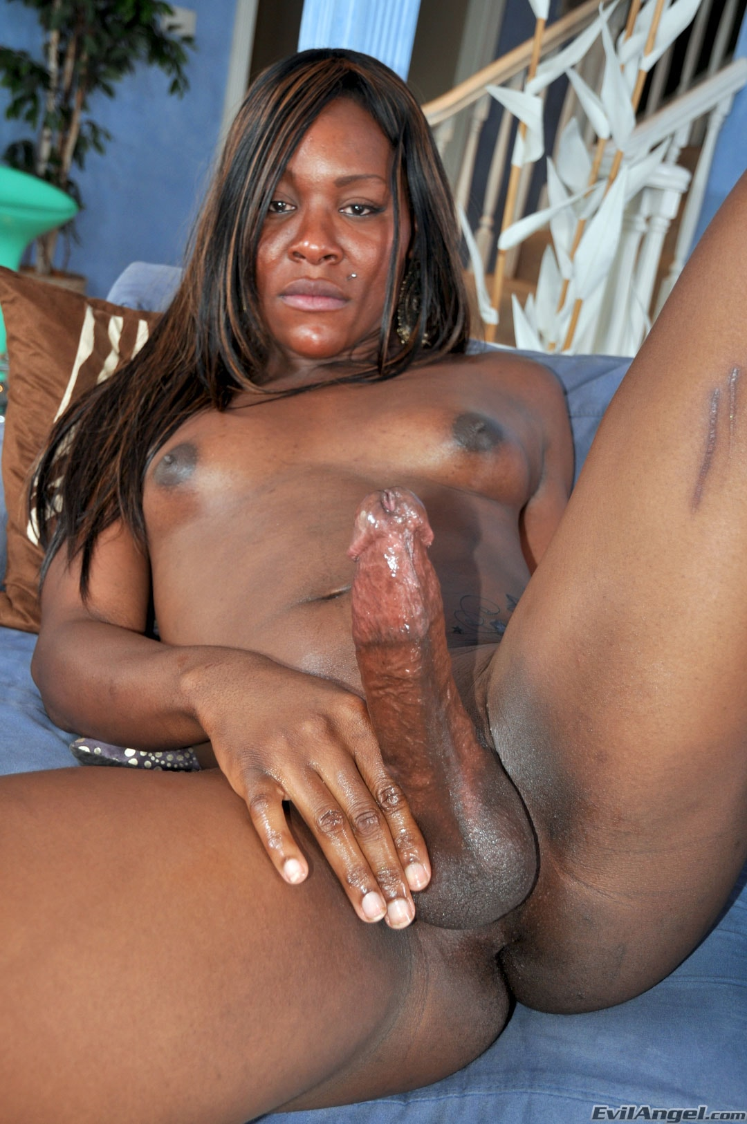 I Love Black Shemales 'Black Shemale Idol - The Auditions' starring Sex Kitten (Photo 27)