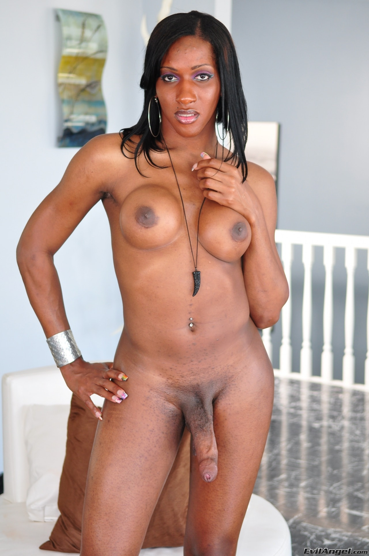 I Love Black Shemales 'Black Shemale Idol - The Auditions 02' starring Ts India (Photo 65)