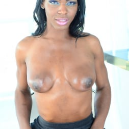 Vixen Coxx in 'I Love Black Shemales' Black Shemale Idol - The Auditions 03 (Thumbnail 28)
