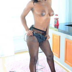 Vixen Coxx in 'I Love Black Shemales' Black Shemale Idol - The Auditions 03 (Thumbnail 35)